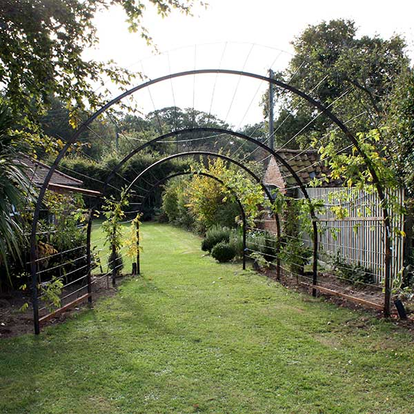 Trellis Tunnel